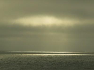 Fitzgerald Marine Reserve 072718  67
