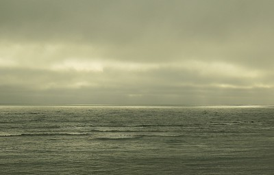 Fitzgerald Marine Reserve 072718  63