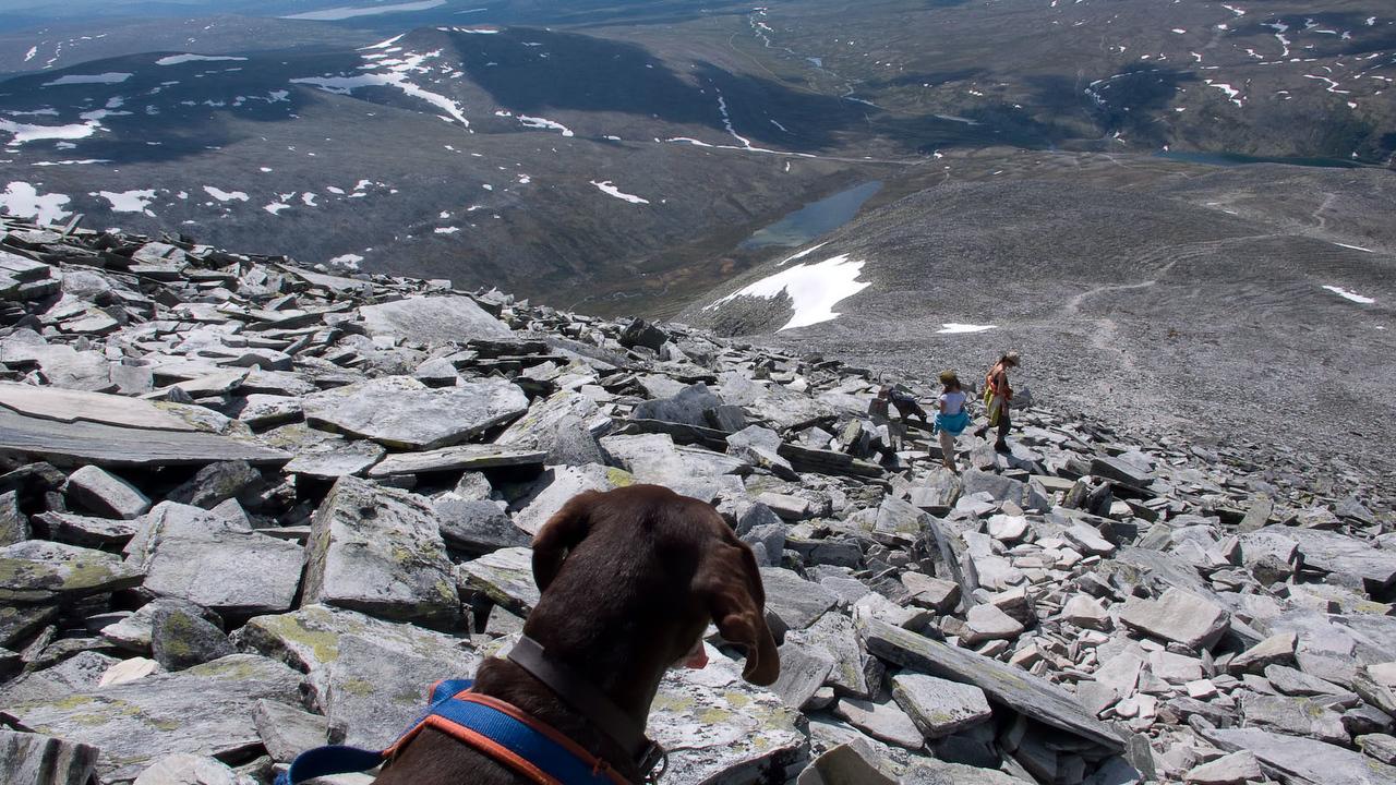 Tur i Rondane (© Ragnar Våga Pedersen)