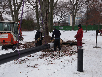 Installation of a Bat habitat in Fælledparken, Copenhagen