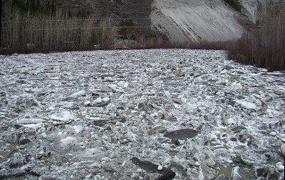 5/6/2008 - Again from the bridge, looking upstream at the jumbled ice blocks, meshed together in an unmoving mass.