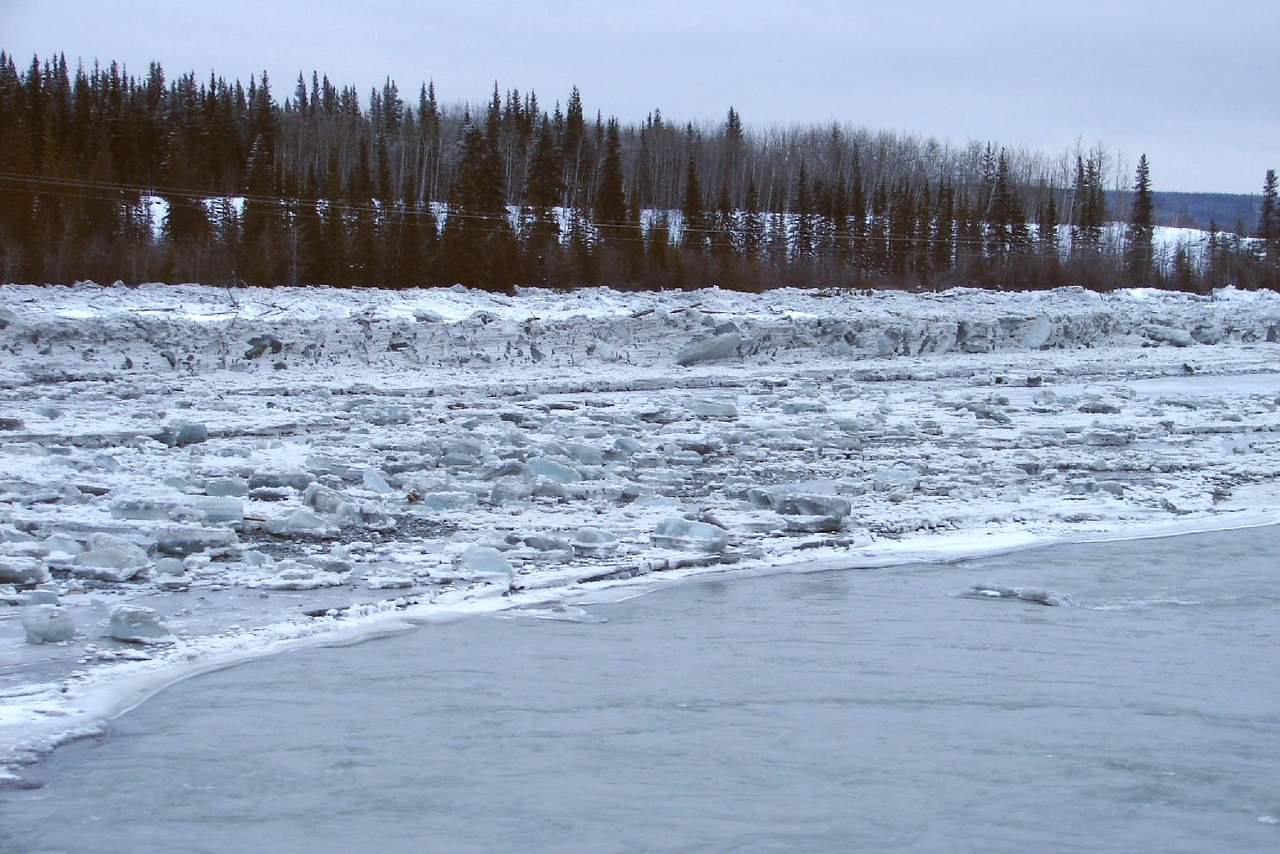 2/5/07 - Just below the bridge, a wall of ice reaching to the tree-lined cutbank on the left side of the river gives evidence of the maximum height of the surge.