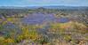AZ-DS-Desertscape 2019.4.9#115. San Carlos Apache Reservation, Gila County Arizona.