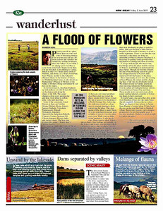 Pictures & article on Kaas Plateau (Maharashtra, India) published in the daily newspaper 'Asian Age'.