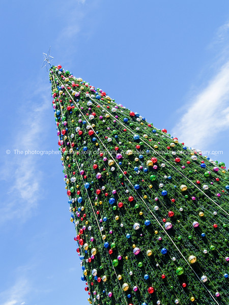 Christmas tree outdoors, colored baubleand star on top, diagonal compositionunder blue sky.
