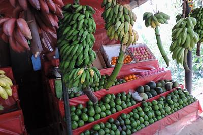 Bothale - Bananas, Bananas and More
