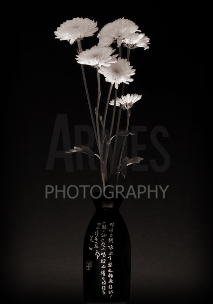 Arrangement of chrysanthemums