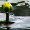 """<a href=""""http://photos.xenogere.com/photo/152/"""">Blog entry</a>"""