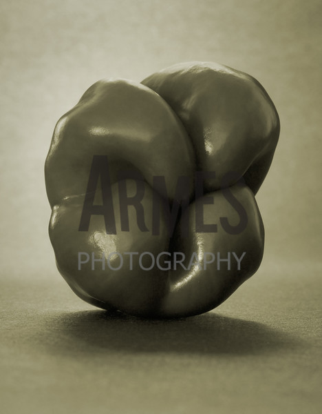 Pepper<br /> (inspired by the great American photographer Edward Weston)