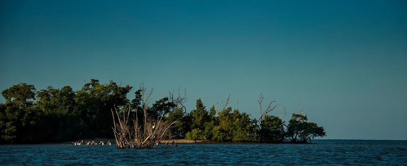 Everglades, FL