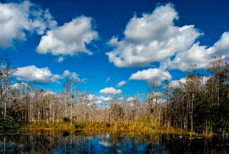 Everglades, FL, Loop Road