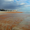 2015_ Ormond  Beach_IMG_4541