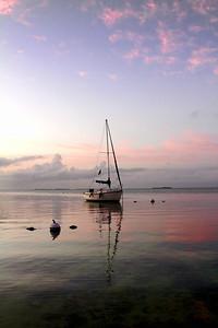 Linda boat b