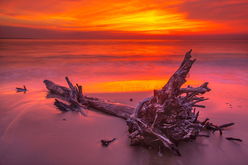 Fiery Sunrise, Boneyard Beach