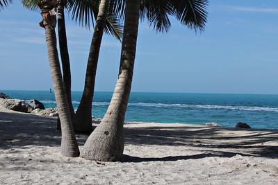 gulf meets ocean