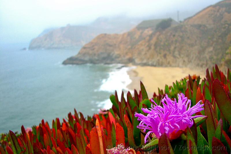 California Coast.