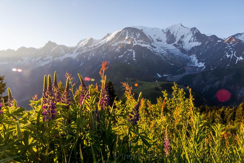 Sunrise View of Mont Blanc