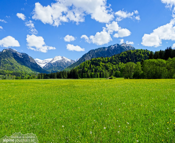 Panorama of a meadow near Oberstdorf, Germany