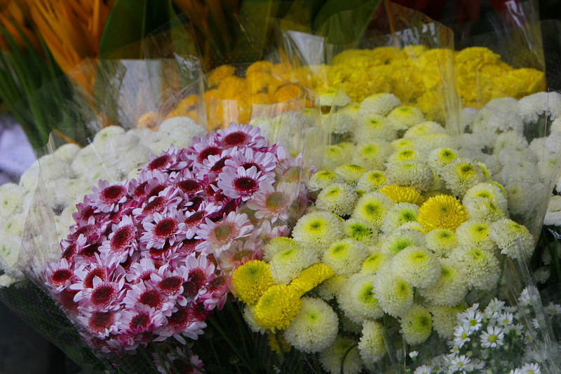 Changmai Flower Market