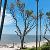 Big Talbot Island beach