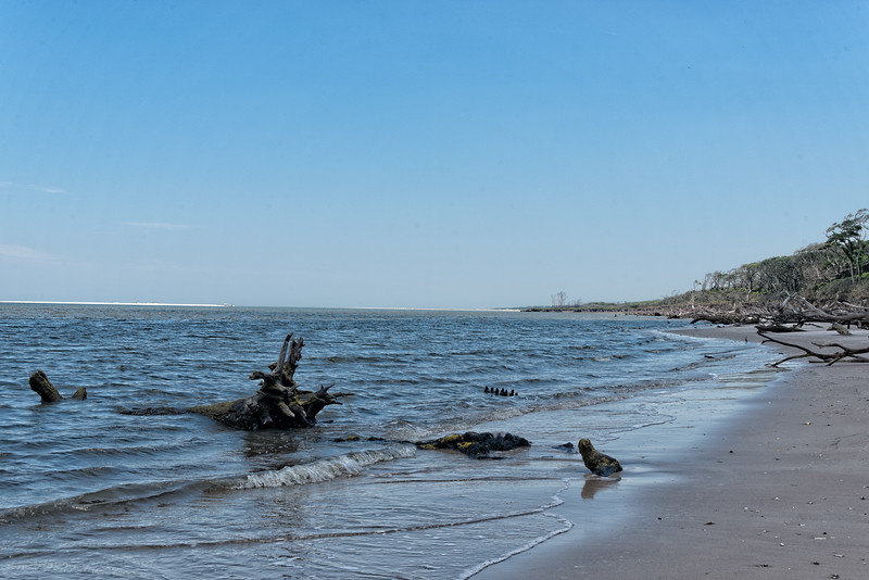Boneyard Beach on Big Talbot Island