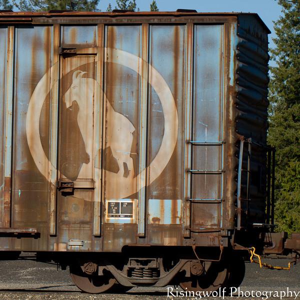 Great Northern Symbol for goats in Glacier National Park