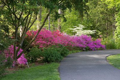 Brookside-145_May 04, 2013