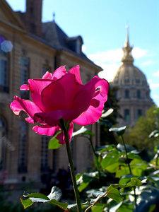 Rodin's Garden, Paris France