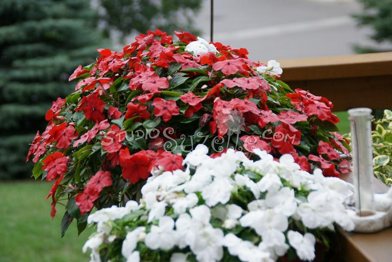 (100) Gen's Flowers