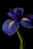 20100730-_G6C8336