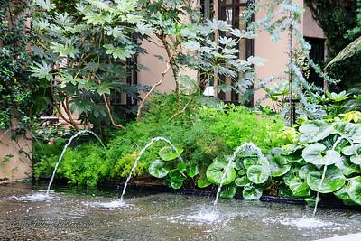Longwood Gardens-4_August 21, 2014