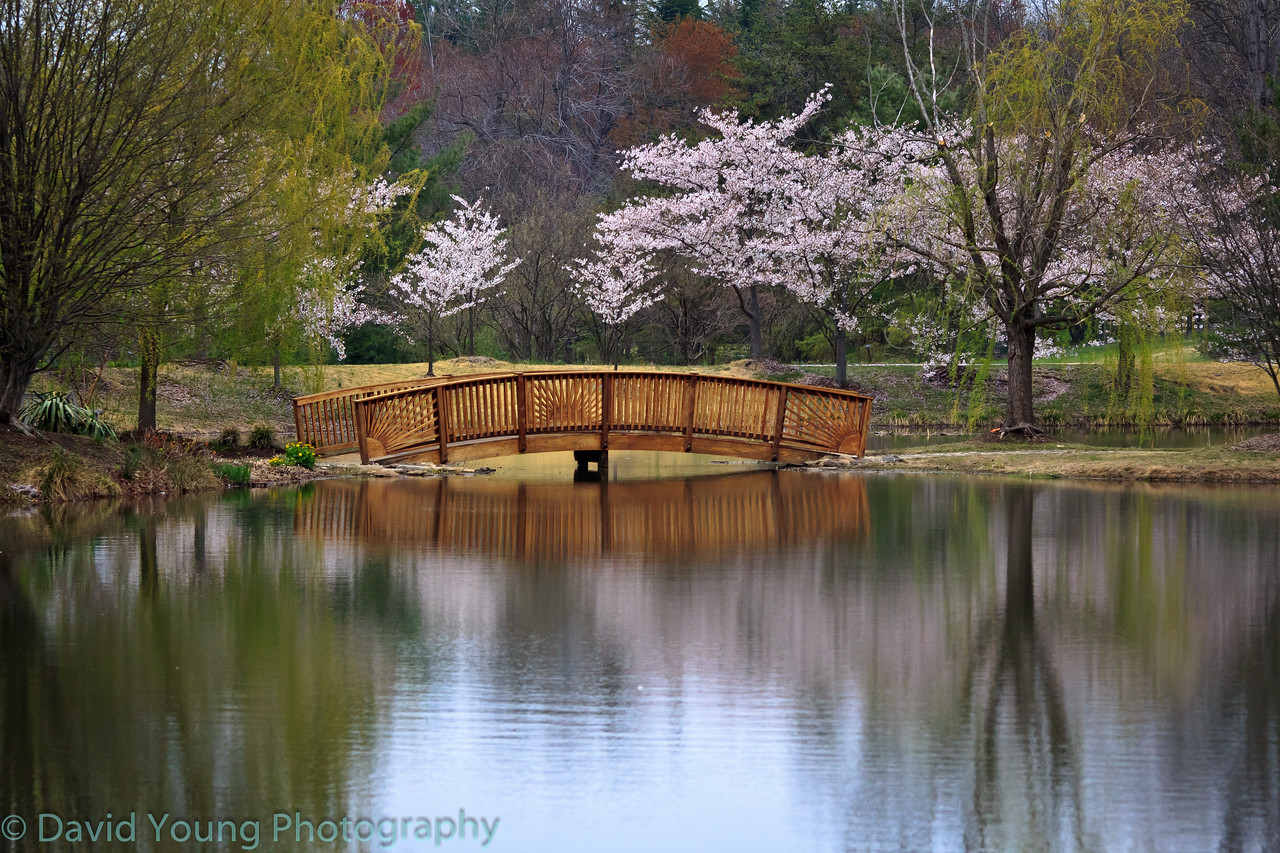 Meadowlark Gardens