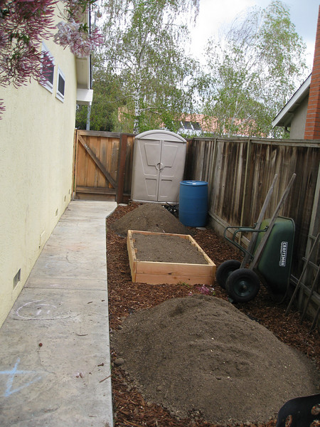 The start of the side garden area.