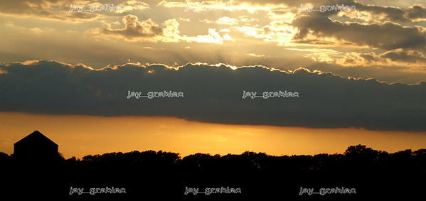 The sun sets over a tree line off of Route 316 in rural Mattoon on Friday, August 8, 2008. (Jay Grabiec)