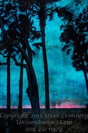 Sunset Through Trees - Painting -  Copyright 2017 Steve Leimberg - UnSeenImages Com _Z2A4754