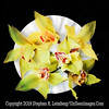 Orchid Dish  PAINTING - Copyright 2015 Steve Leimberg - UnSeenImages Com A8438018