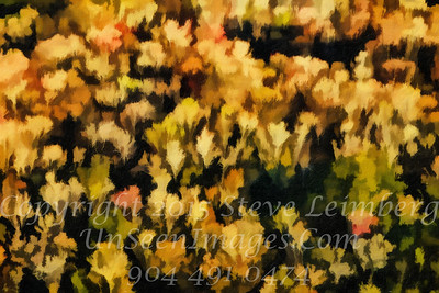 Trees Painting -  Copyright 2017 Steve Leimberg - UnSeenImages Com L1010098