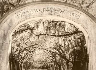 Wormsloe Cemetery - Copyright 2018 Steve Leimberg UnSeenImages Com _DSF4881