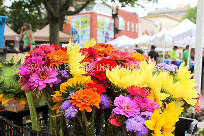 Easton Farmers' Market Saturday 8/2/2014