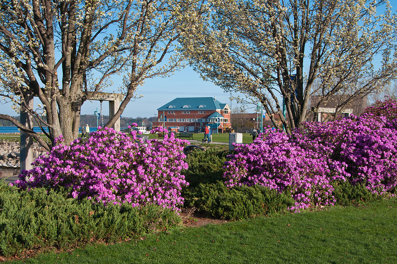 Burlington Coast Guard Station in Spring