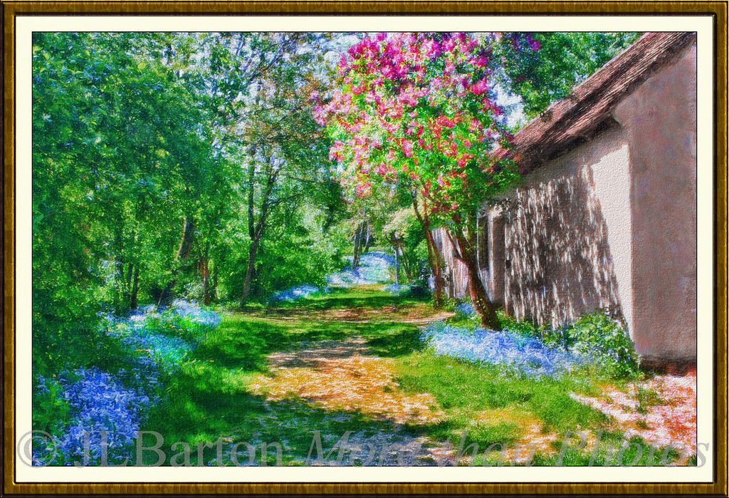 Country Spring Bluebells and red chestnuts Lower Austria