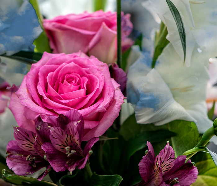 Roses in the Sky-0200