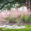 Sweetgrass and Oak