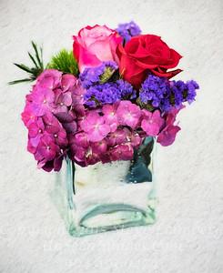 Flowers - Copyright 2017 Steve Leimberg - UnSeenImages Com DSC00068