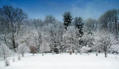 Winter Wonderland - Gayl and Herb Henze Dec 2013  _H1R8846