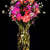 Becky's Flowers 2016-09-04 13-29-53 (B,Radius8,Smoothing4)