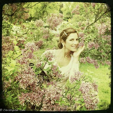 Lilac Beauty.