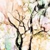 Grace - Painting - Copyright 2018 Steve Leimberg UnSeenImages Com_Z2A2436