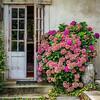 Farmhouse Doors and Hydrangeas