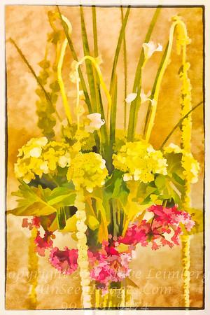 Lis's Flowers - Copyright 2017 Steve Leimberg - UnSeenImages Com _A6I3479
